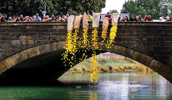 The Duck Race at Arundel Festival
